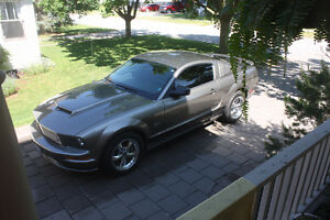2005 Ford Mustang GT Coupe  less than 45000 km