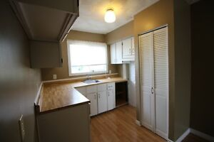 Great Starter Home With Off Street Parking! St. John's Newfoundland image 3