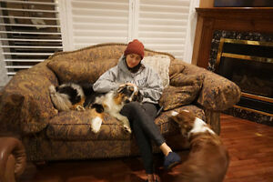 Professional Family Style, In-Home Dog Sitting Service London Ontario image 6