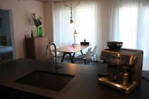 Beautiful furnished condo Griffintown available now $1550/months