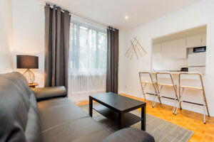 Beautiful Spacious 2 bed apt for rent/Superbe apt à louer 2 cac