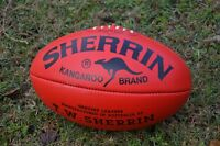 Come Play Australian football with the High Park Demons