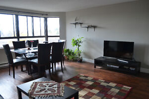 Large bedrooms in a furnished 2 BDR apartment available Jan 1st Kitchener / Waterloo Kitchener Area image 7