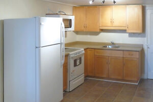 Renovated 2 Bedroom Walkout Unit available Nov 1 or 15, or Dec 1 Kitchener / Waterloo Kitchener Area image 5
