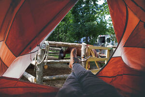 Camping with your horse at Horse Country Campground