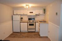 1 Bedroom Basement Apartment for September 1st in Central Barrie