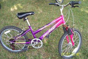 Lots of Various Bicycles For Sale (good shape) Sarnia Sarnia Area image 2