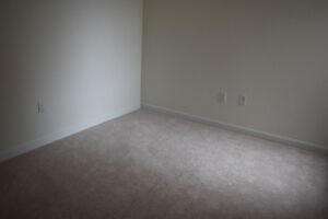 Brand New Light Beige Carpet- Best Offer
