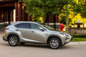 Wanted: Lexus NX 200t or NX300h