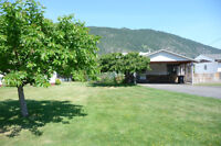 Little Shuswap Waterfront in the heart of Chase
