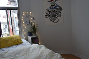 Summer Sublet beautiful bedroom in the Plateau