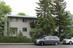Renovated Large 2 BR Apt Close to U of C, SAIT and NW Hospitals