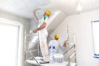 Painter/plaster