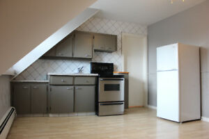 Cute renovated bachelor apartment