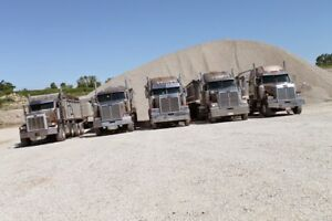 TRUCKING BUSINESS CLOSING SALE... ALL TRUCKS FOR SALE!