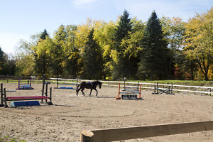 One on one riding lessons- October discount Peterborough Peterborough Area image 4