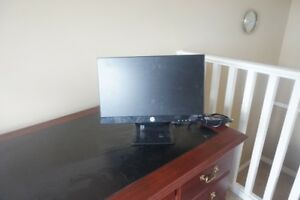 HP 20 INCH FLAT SCREEN MONITOR