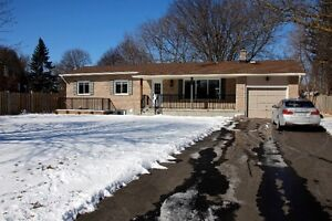Beautiful apartment in central location- lower level of bungalow