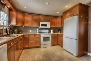 Hardworking Cleaning Lady - Good Old Fashioned Cleaning ! Stratford Kitchener Area image 1