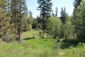 Large lot for sale in 108 Mile Ranch
