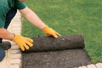 landscaping SOD PROMOTION $0.59SQFT BOOK NOW