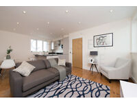 Newly refurbished 2 double bedroom Warehouse Conversion with roof garden