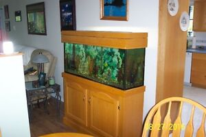 45 Gal fish tank