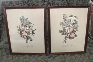 Vintage Pair of Botanical/Floral Prints