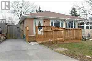 Upgraded house for rent in Newmarket