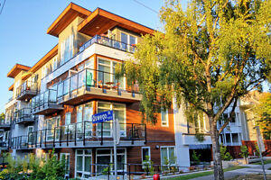 Fabulous NEW condo in James Bay!