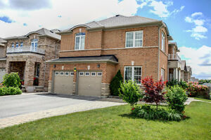348 Golden Orchard Rd - Vaughan - Premium 44ft Corner Lot