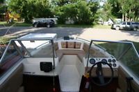 Fun Family Boat for Sale