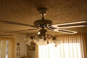 Indoor – (2) Ceiling Fan(s) with Lights