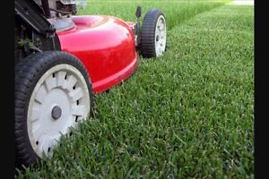 Get your lawnmower & other tools ready for spring!