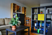 Cute Apartment - Cote des Neiges