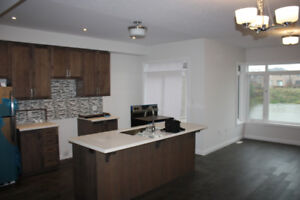 Amazing townhouse for Lease in Stoney Creek