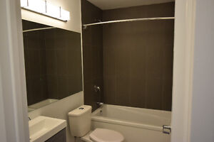 Must See Renovated top to toe 2 Bed Suites  insuite Laundry Kitchener / Waterloo Kitchener Area image 3