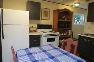 Outstanding furnished apartment! St. John's Newfoundland image 5