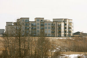 Avail Immed -2 bed, 2 bath fully furnished condo- fort sask