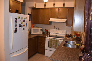 Room for Rent in Mississauga (working/student female)