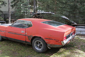 Ford Mustang MACH 1 351 4 barrel carb FASTBACK