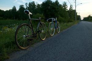 Track 4130 CrMo fixed gear