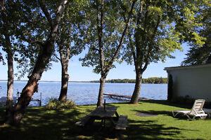 21 Osprey Trail, Kirkfield - Cottage on Balsam Lake Kawartha Lakes Peterborough Area image 10