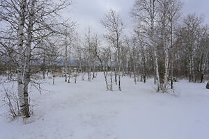 Beautiful Private Building Lot on 2+ Acres in Richer!