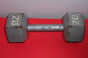 20 lbs pound Dumb Bell
