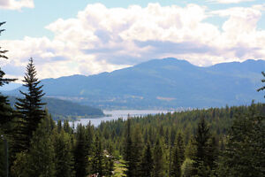 Private 4.25 Acre Lot with Lake View