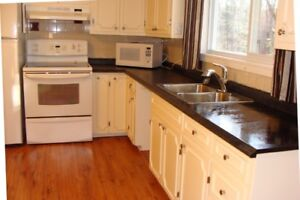 One bedroom+garage+all utilities+furnished+pet friendly in Geary