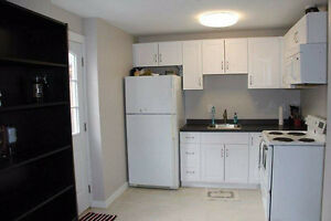 $950 - 1 bedroom basement suite (Cloverdale/Willowbrook)