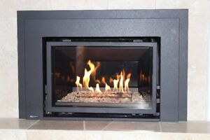 Propane/natural gas fireplace insert