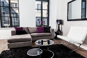 Gorgeous Furnished Loft in Old Montreal